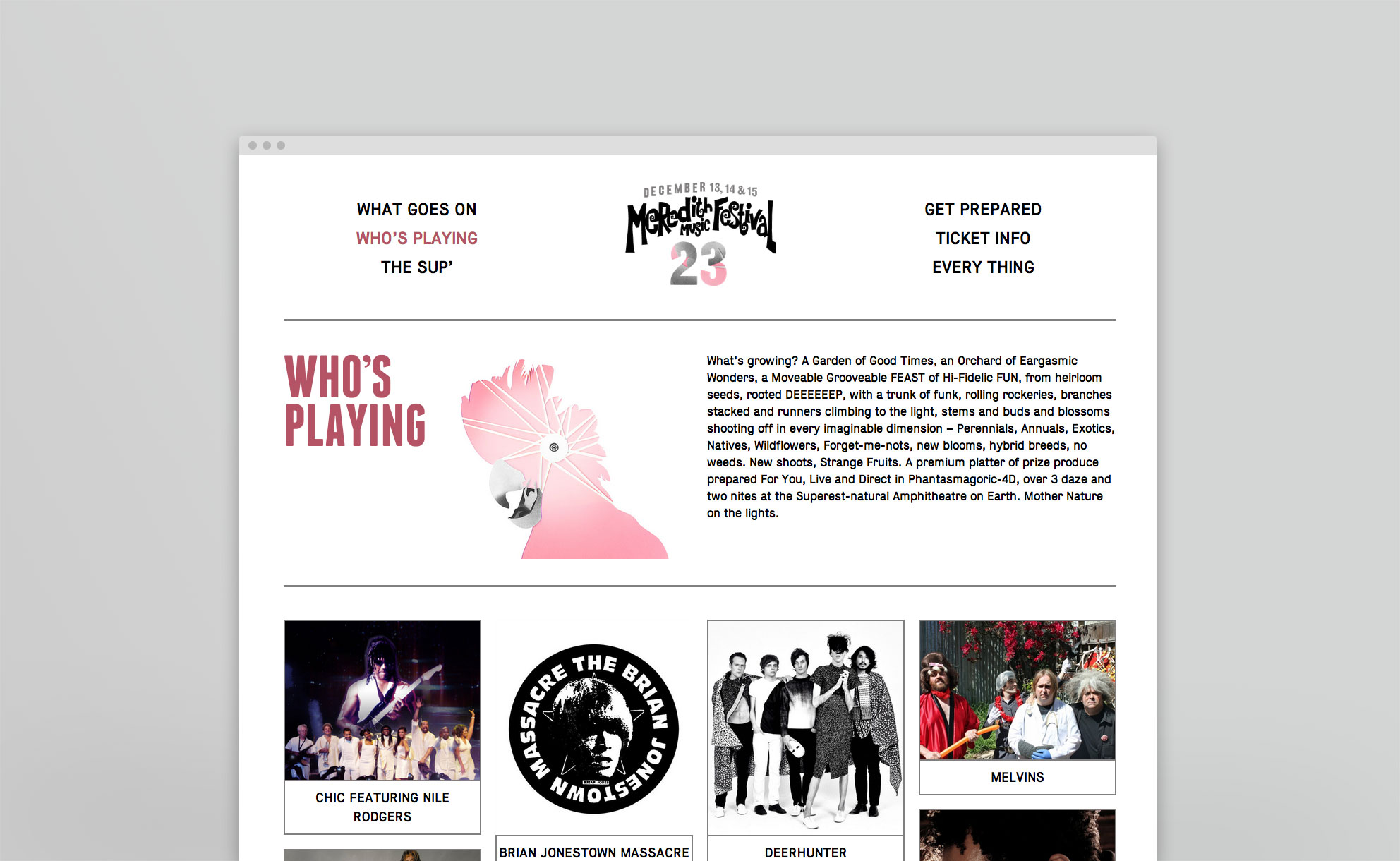 Meredith Music Festival Website